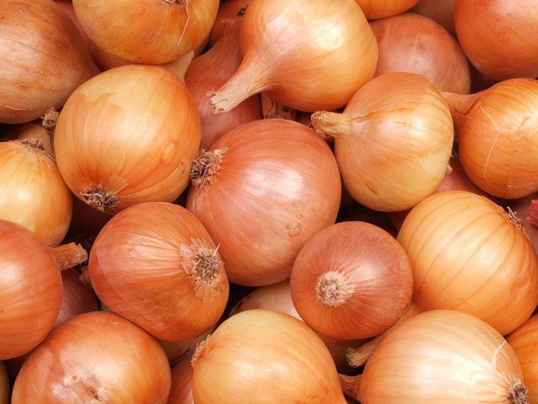 onion-gold